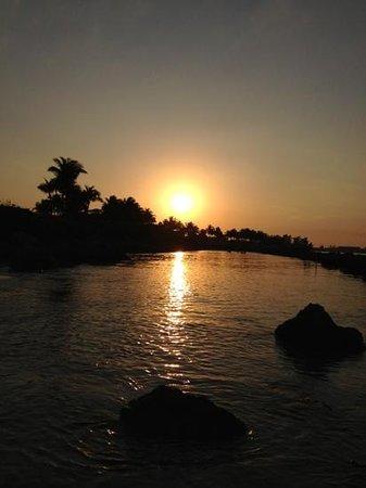 Dubois Park: Sunset over a shallow pool