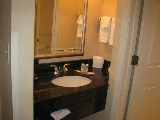 Quality Inn South Bend: Sink area separated from the rest of the bathroom by a door