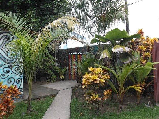 Hostal Mar e Iguana : Jardin et porte de sortie / entrée.
