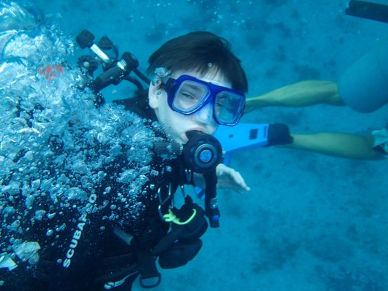 Cool Underwater Pic Picture Of Living The Dream Divers Seven Mile Beach