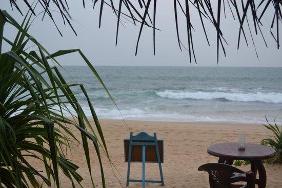 Cinnabar Resort照片