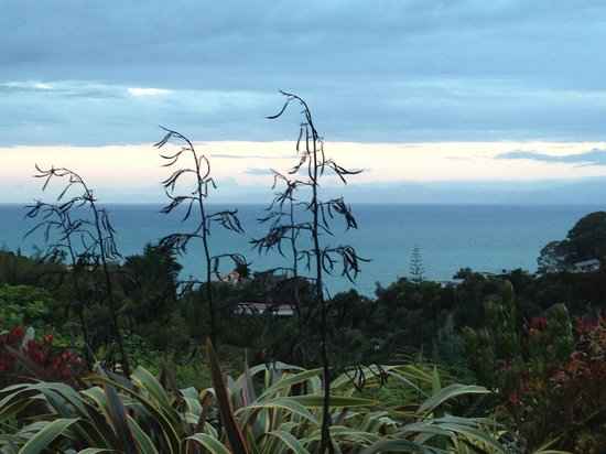 Bellbird Lodge: View from lodge