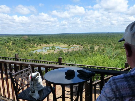 Victoria Falls Safari Lodge: The waterhole from the bar