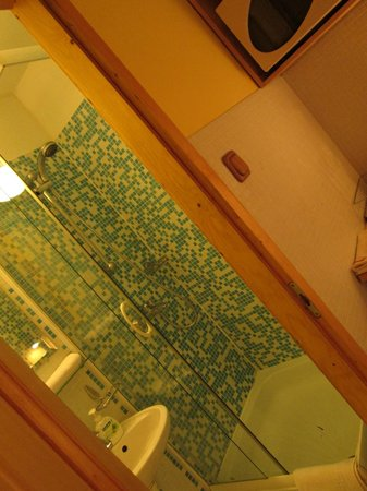 """Green Dream Apartment: Shower - clean and great for """"normal"""" size persons - if you are really tall or wide - . . . ."""