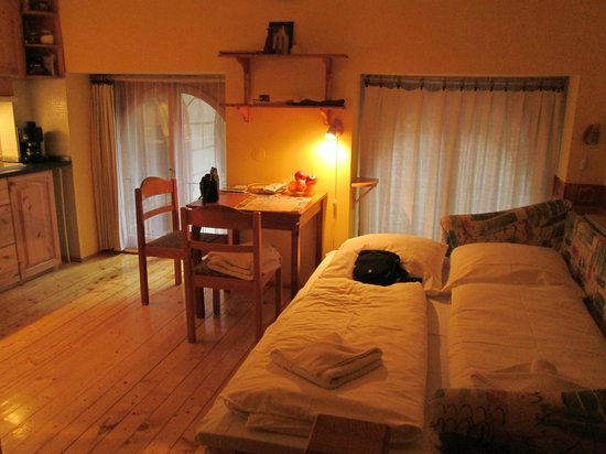 Green Dream Apartment: Great room, kitchenette table and bed
