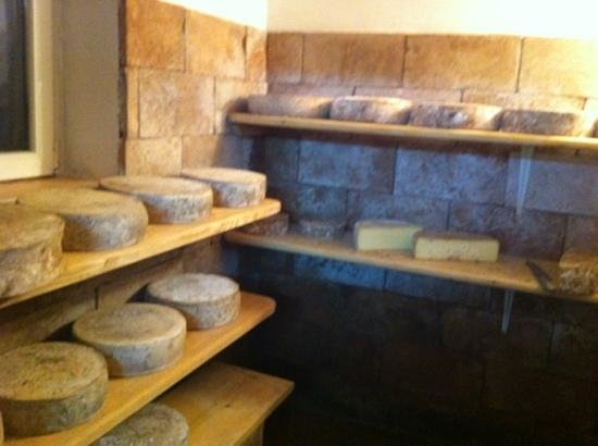 Agriturismo Fontanella: i formaggi