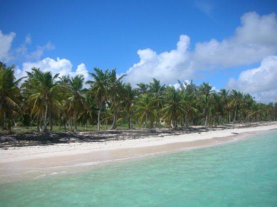 Grand Bahia Principe Punta Cana: Widok z katamaranu