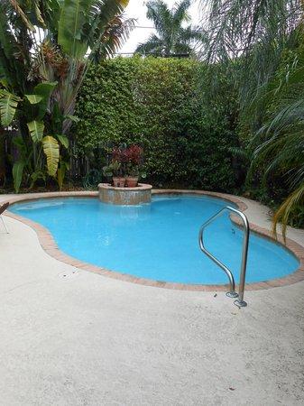 Mango Inn Bed and Breakfast: Pool