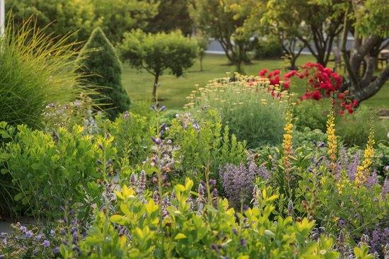 L'Auberge Provencale Bed and Breakfast: Spring Flower Gardens in Shenandoah Valley