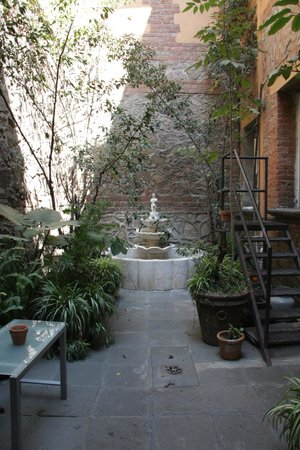 El patio 77, first eco-friendly B&B in Mexico City: Entrance inside gates