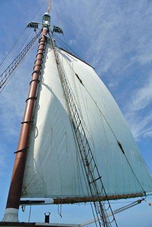 Liberty Fleet of Tall Ships: Sails