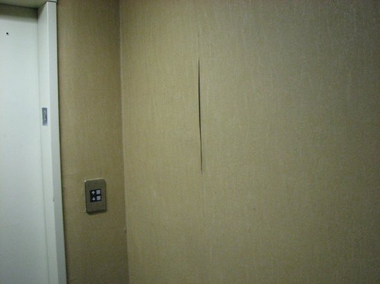 Howard Johnson Texarkana: Peeling Wallpaper at Elevator