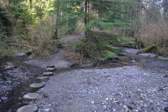 Shoreline, WA: Boeing Creek crossing