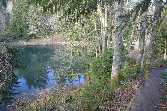 Boeing Creek Park: Hidden Lake trail