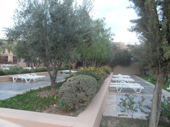 Club Marmara Madina: jardins de l'hotel