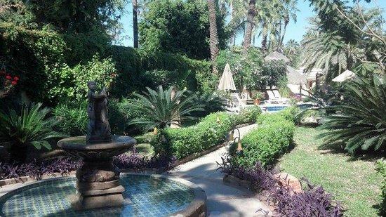 El Encanto Inn & Suites Boutique Hotel: Garden/Courtyard/Pool Area