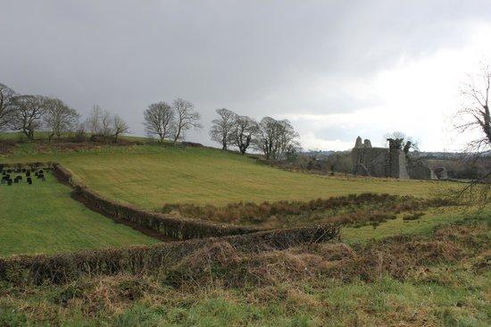 Inch Abbey: Pretty Scenery