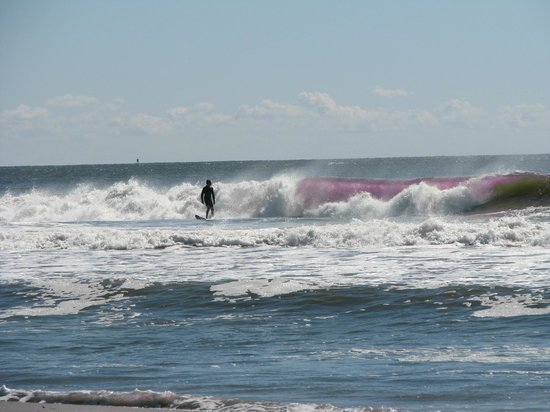 Ocean City Beach: ...5mm wet suit 'Surf Dude!!  He did pretty good!!