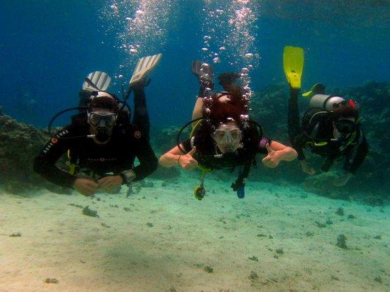 Deep Blue Divers Dahab : ... Take it from meeee!