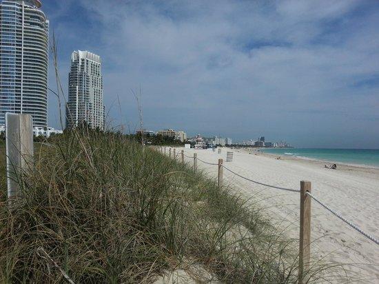 Hilton Bentley Miami/South Beach: Shot from the entrance to the beach area.