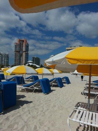 Hilton Bentley Miami/South Beach: Hilton Beach area