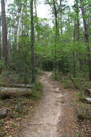 Huntsville State Park 사진