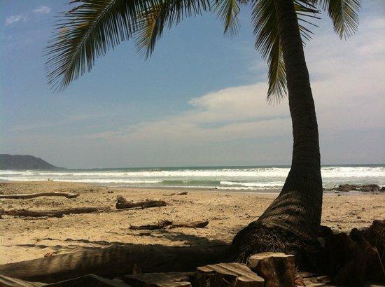 هوتل تروبيكو لاتينو: Beach