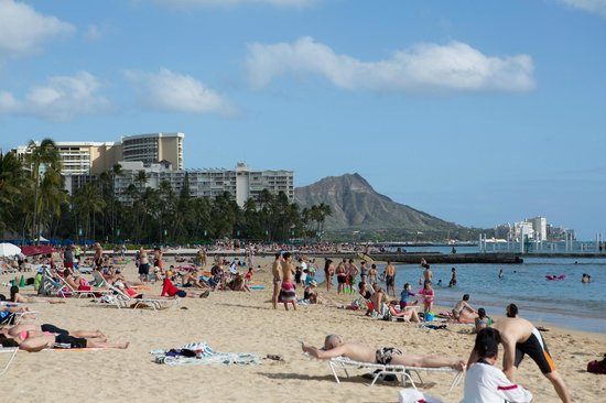 View From Waikiki Beach At Our Hotel Picture Of Hilton