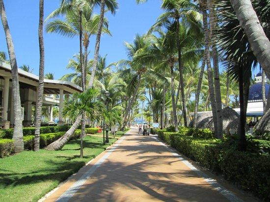 Hotel Riu Bambu: clean walkways