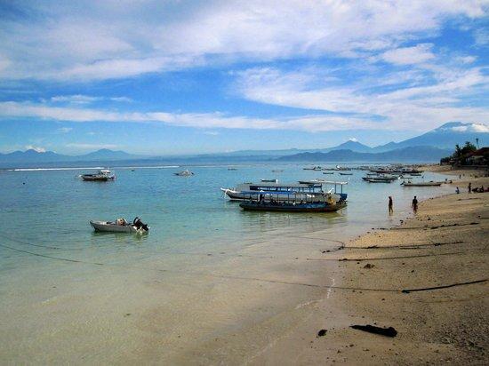 Ketut Losmen Bungalows : Great beach front property
