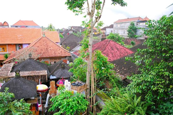 Sania's House Bungalows: Amazing views in the heart of Ubud