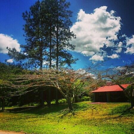 Adjuntas, Puerto Rico: Cabaña @ Parador Villas Sotomayor ! !
