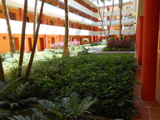 Iberostar Dominicana Hotel: Vegetation on the propertygrounds