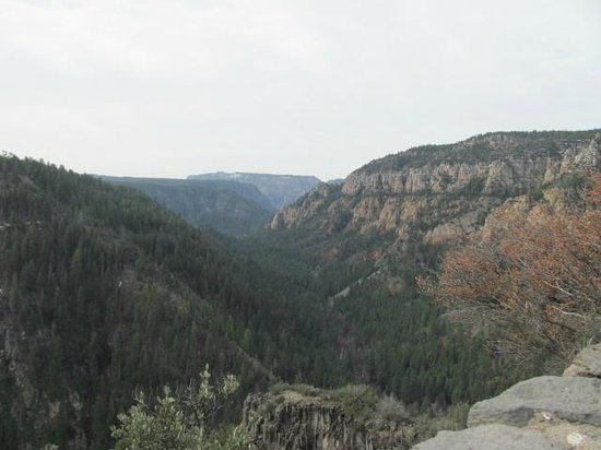 Oak Creek Vista Overlook: Oak Creek Canyon from Overlook