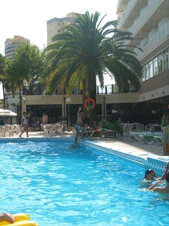 Foto de hotel joya benidorm piscinas tripadvisor for Piscinas benidorm