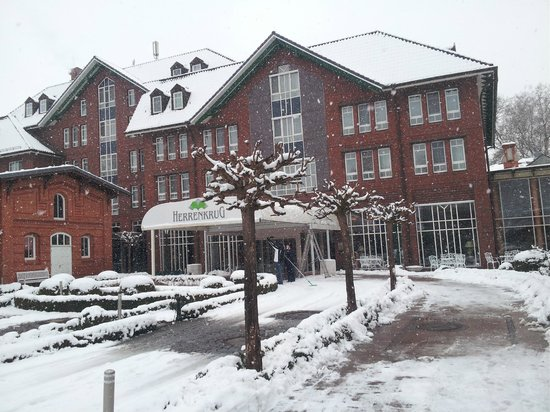 Dorint Herrenkrug Parkhotel Magdeburg: Такой он зимой