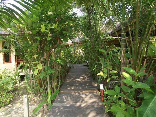 Sunda Resort: Alle Bungalows über Steganlage verbunden