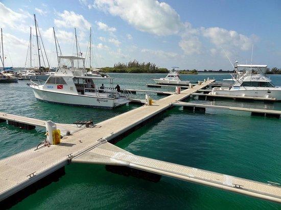 Sirena Beach : Marina