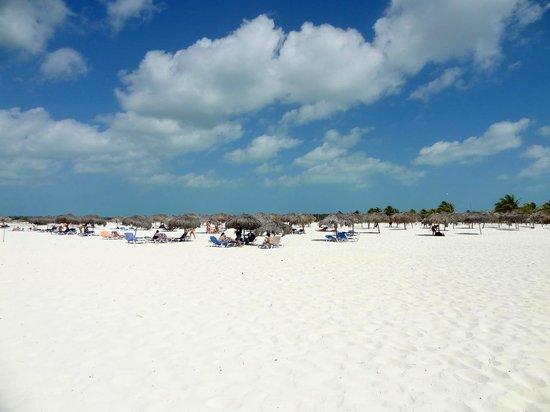 Sirena Beach : Playa Sirena