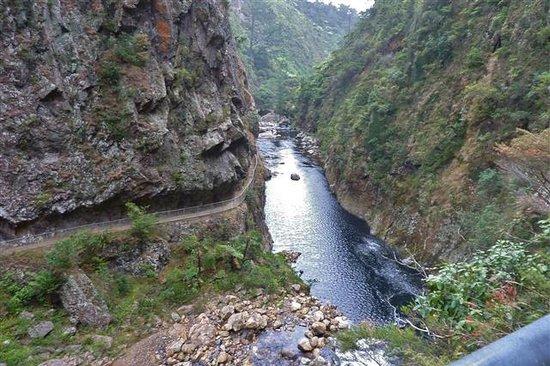 Karangahake Gorge: Windows Walk - looking down from tunnel 'window'