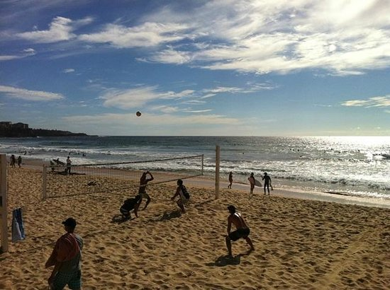 MANLY BEACH VIEW BED AND BREAKFAST: Volley ball on Manly Beach