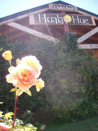 Cabanas Huala Hue: getlstd_property_photo