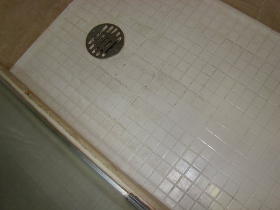 Miami International Airport Hotel: Filthy shower tiles