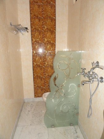 Hotel Shiva Intercontinental: well maintained toilets