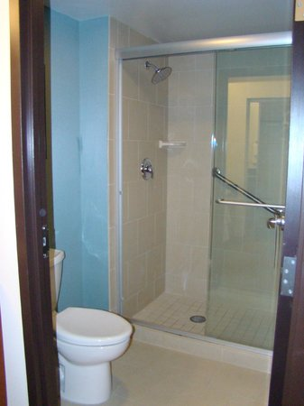 Hyatt Place Ft. Lauderdale Airport & Cruise Port: Bathroom with shower