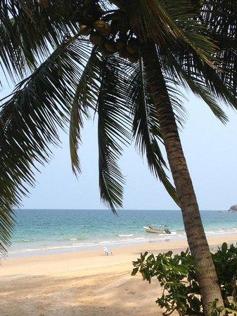 Sea Gypsy Village Resort & Dive Base: gorgeous beach!
