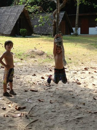 Sea Gypsy Village Resort & Dive Base: rope swing next to the kids club
