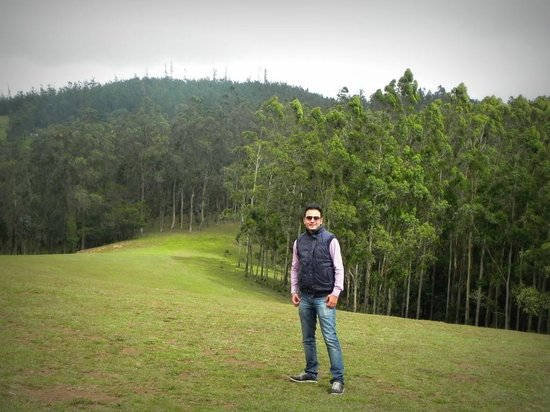 Shooting Point: Lush Green Forest