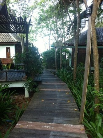 Sunset Cove Resort : path to the pool and the beach