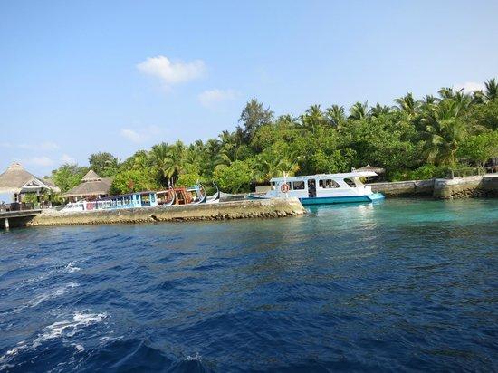Ellaidhoo Island: Diving centre Dive&Saile Ellaidhoo